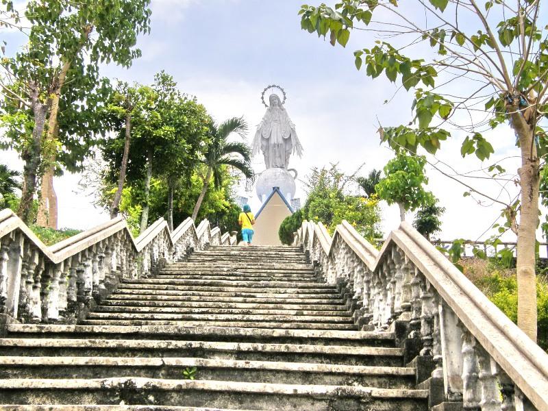 Cebu and Bohol Expectations